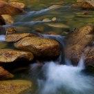 Stream and stone