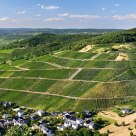 Marvelous Mosel Valley wineyards
