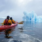 Kayaking through the icebergs