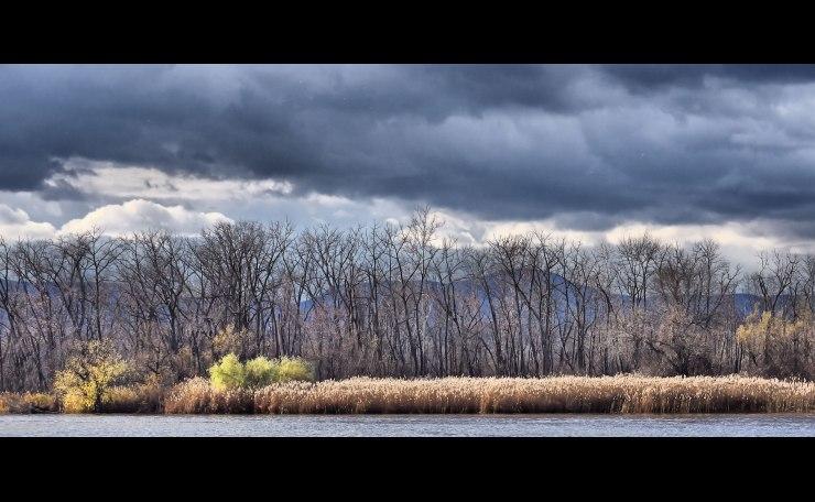 Late Fall Along the Hudson