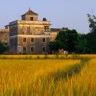 Good harvest year of Village