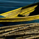Boat and Bamboo