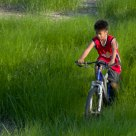 Cycling In The Field