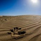 Sand dunes Maspalomas