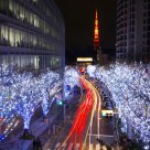 Christmas Illumination at the Roppongi Hills