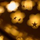 Newborn Christmas stars
