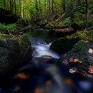 Wolf Creek in Fall