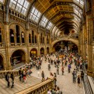 Museo Nazionale di Storia Naturale - National Natural History Museum