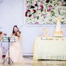 Wedding,Cake,violinist