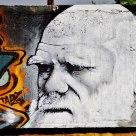 Graffiti of Mr Darwin