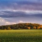 Rural autumn evening III