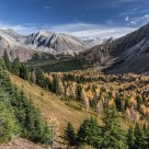 Near Highwood Pass in October