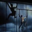 Le Cirque #14