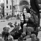 Piazza San Marco (San Marco Square in Venice)