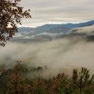 Encima de la niebla