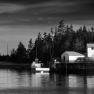 Indian Harbour BW