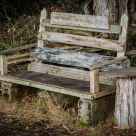 Bench one in a million