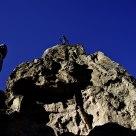 Dinosaurs On The Rocks